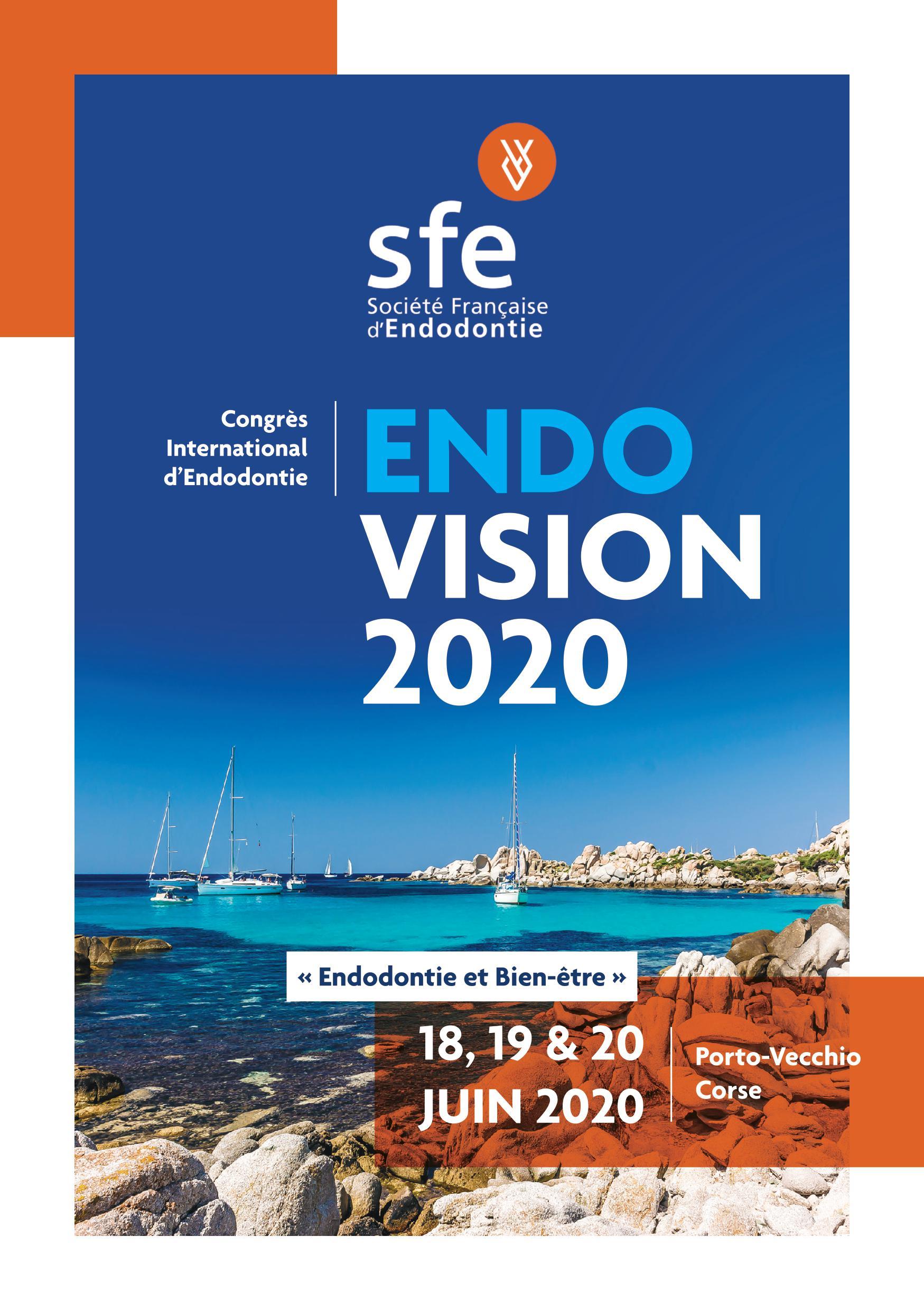 SFE : endo vision